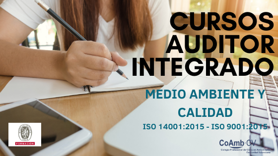 Cursos Auditor integrado 1